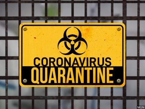 Bored During Quarantine?